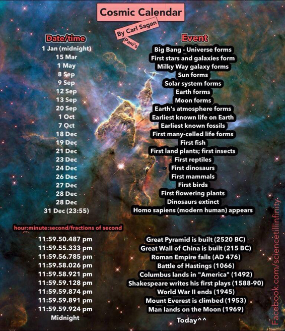 Cosmic Calendar.Category Cosmic Calendar Pani S